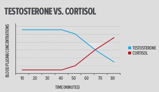 Graphique Testostérone vs cortisol